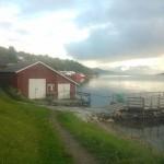 grovfjord3